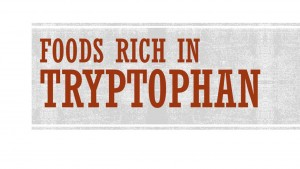 foods rich in tryptophan
