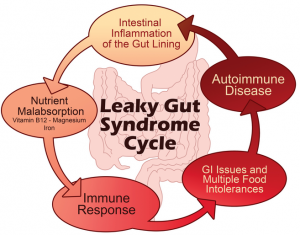 leaky gut image cycle